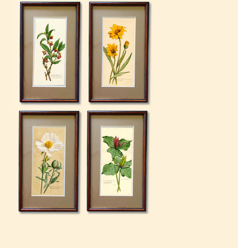 Image of four watercolors